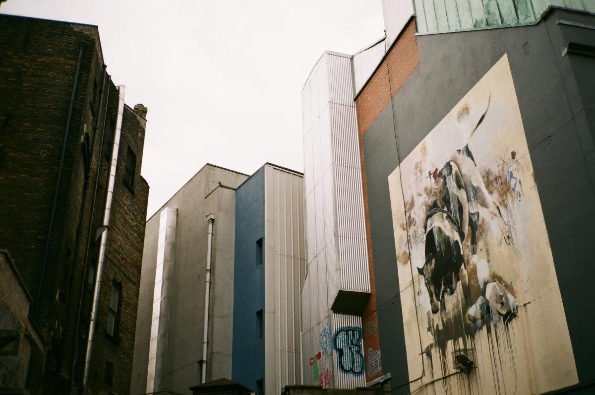 Dublin, Ireland - Derwent Labs
